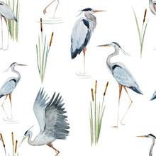 Watercolor Heron Pattern