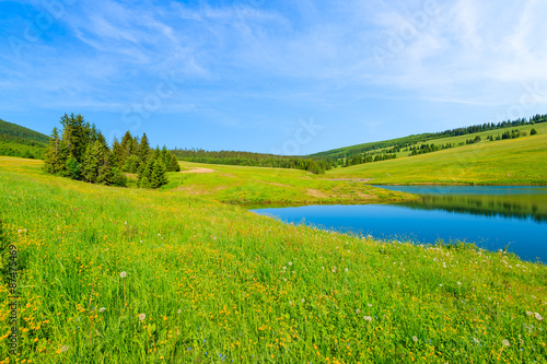 Poster Heuvel Green meadow with flowers and beautiful lake in summer landscape of Tatra Mountains, Slovakia