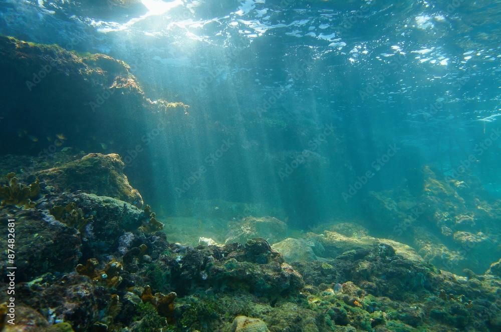 Fototapeta Sunbeams underwater viewed from seabed in a reef