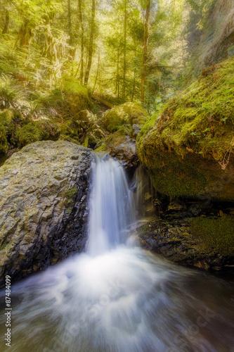 Photo Waterfall along Gorton Creek in the Afternoon in Oregon
