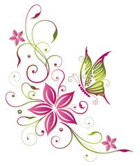 Fototapeta Motyle Große Blüte mit Schmetterling