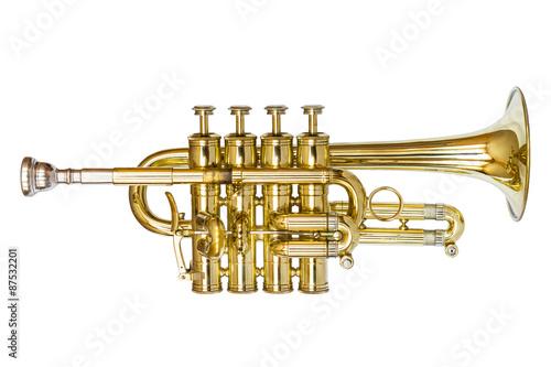 Fotografie, Obraz  Piccolo Trumpet Isolated on White
