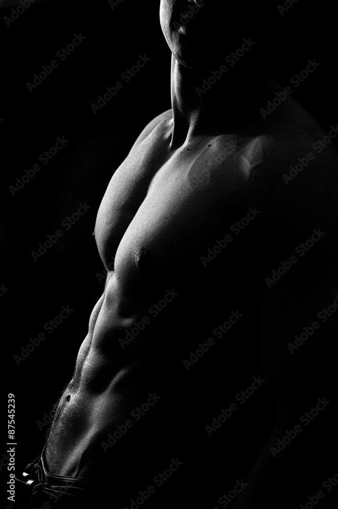 Fototapeta Muscles #1