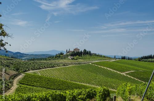Foto  Chianti Tuscan vineyards