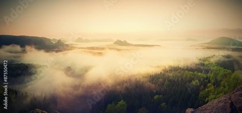 Fotomural Landscape misty panorama