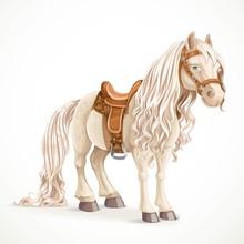 Cute Saddled Little Pony Horse...
