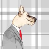 fashion animal .watercolor illustration.Business Dog  - 87593493