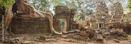 Wall Murals Place of worship Ta Prohm Temple ancient tree roots, Angkor