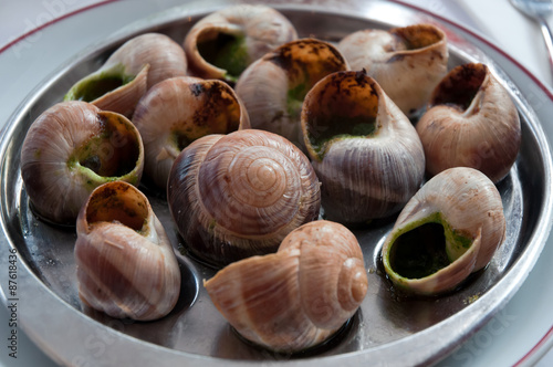 Photo  Escargot dish on the plate, traditional french delicatessen .