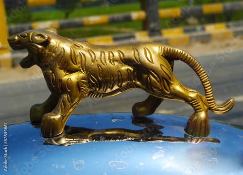 Photo  Gold Metal Tiger on Silver Surface