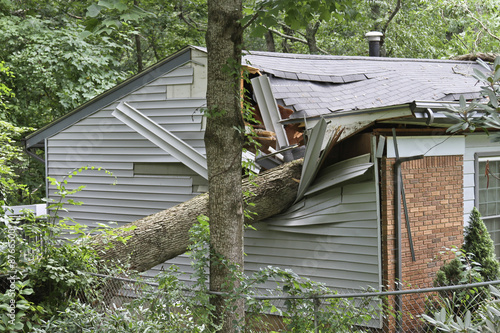 Foto op Canvas Onweer Small House Crushed By a Large Oak Tree