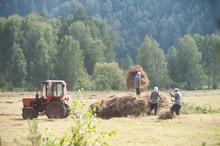 Men Haymaking