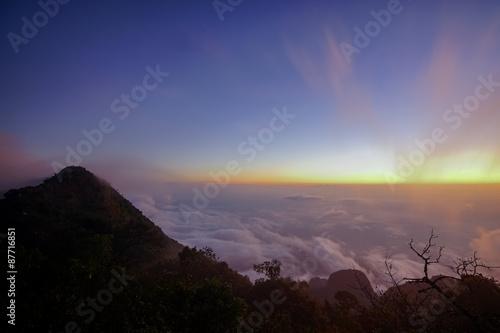 Foto op Canvas Olijf Horizon and the mist