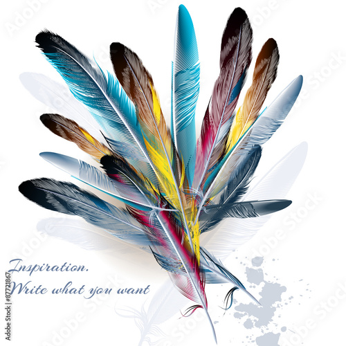 Background with feathers symbol of inspiration and writing