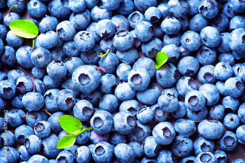 Fototapety, obrazy: Blueberry background. Ripe and juicy fresh picked blueberries closeup