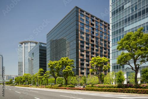 Fototapety, obrazy: 新緑のオフィスビル街