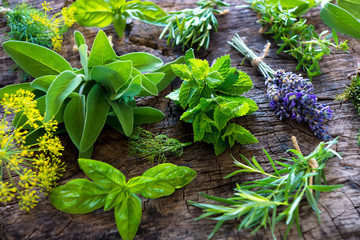 Fototapeta Przyprawy Fresh herbs on wooden background