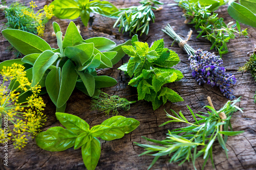 Fotografia  Fresh herbs on wooden background