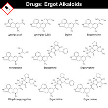 Ergot Alkaloids And Their Synt...