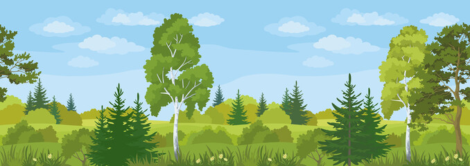 Fototapeta Do przedszkola Seamless Horizontal Landscape, Summer Forest