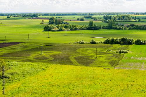 Fotobehang Rijstvelden beautiful green fields under blue sky in summer
