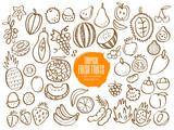 Set of tropical fruit doodles
