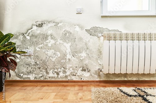 Mold and moisture buildup on wall of a modern house Wallpaper Mural