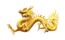 Golden Dragon Statue On White ...