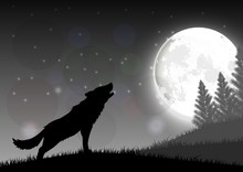 Silhouette Of A Wolf Standing ...