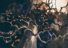 Looking Up In Flock Of Birds Flying To Mysterious Dark Old Tree,digital Painting
