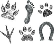 Sketch Of Animal Footprints And Paw Prints.