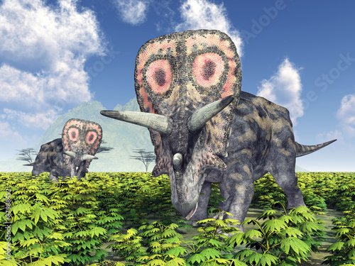 dinozaur-torosaurus