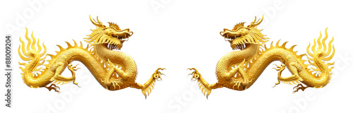 Fotografie, Tablou  Couple golden dragon statue on white background.