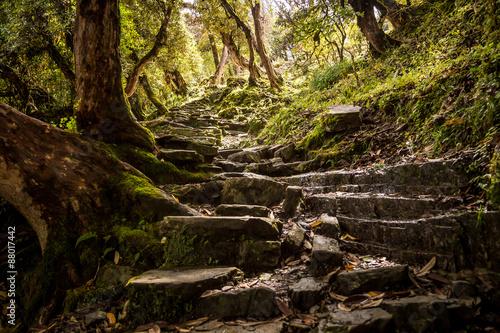 Wall Murals Nepal Stone stairway