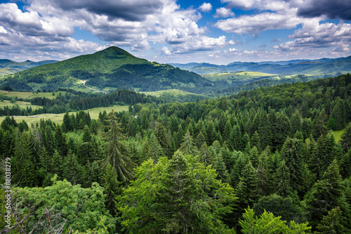 Foto auf Gartenposter Hugel Mountains covered in pine trees