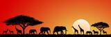 Animals savannah