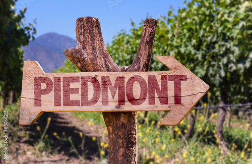 Piedmont wooden sign with winery background Canvas Print
