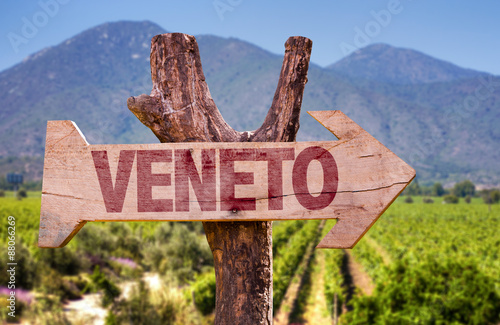 Fotografie, Obraz  Veneto wooden sign with winery background