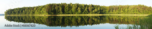 Las i jego odbicie w jeziorze