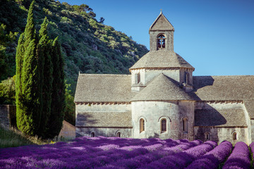 FototapetaLavender in front of the old abbey of Senanque in Provence