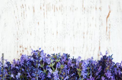 lavender flowers - 88089608