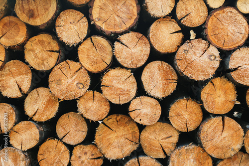 Fotobehang Brandhout textuur Stacked round firewood