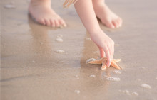 Close-up Of A Girl Picking Up A Starfish