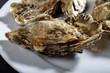 Austern auf einem Teller