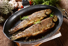 Fried Trouts With Rosemary