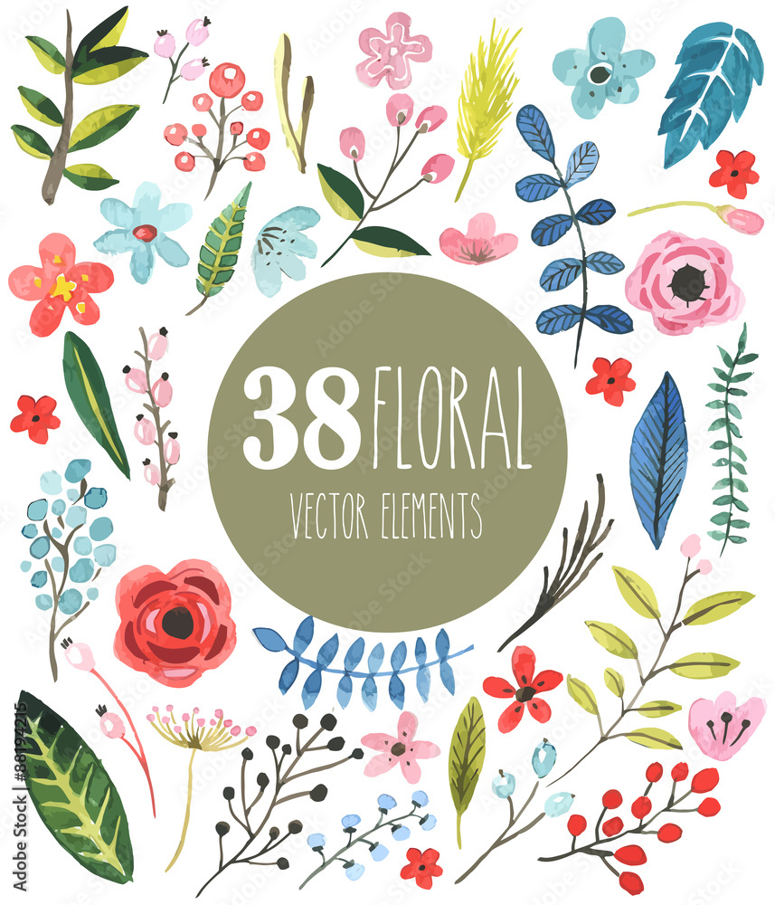 Fototapeta 38 floral vector watercolor elements