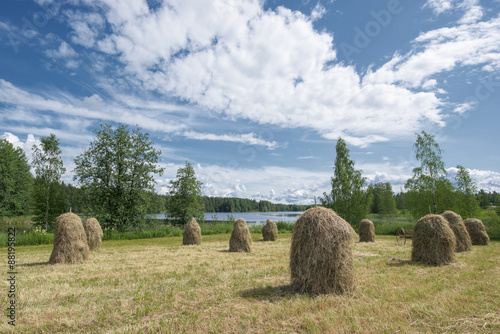 Traditional Finnish haystacks in a hayfield Fototapet