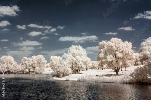 Cadres-photo bureau Bleu vert Landschaft am See in Infrarot