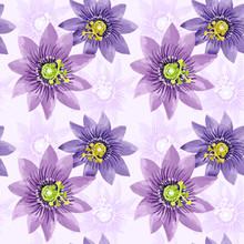 Passion Fruit Flowers Pattern