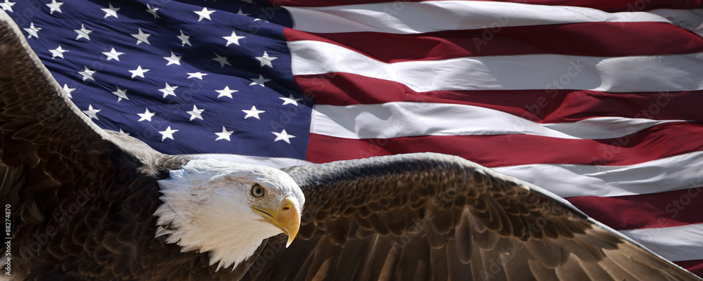 Fototapety, obrazy: patriotic eagle taking wing in front of US flag
